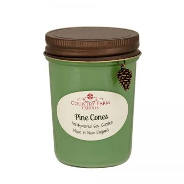 Pine Cones Soy Candle